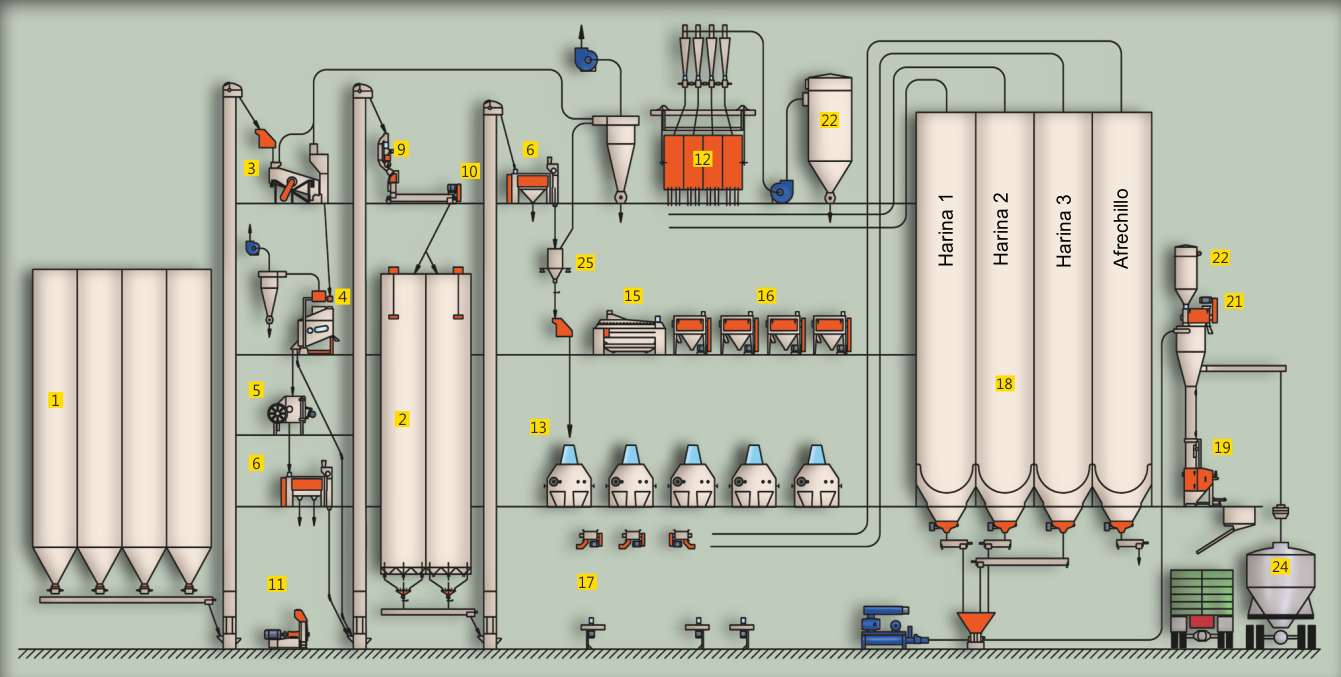 Layout of the Wheat Milling Process